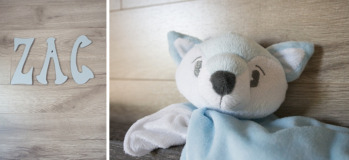 décoration chambre garçon et doudou chien bleu